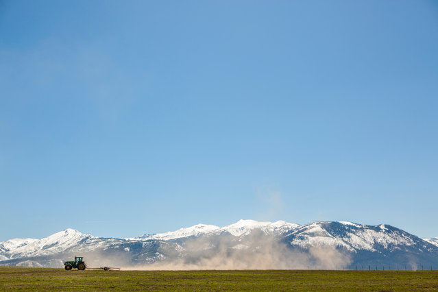 """Tim Daw, May winner. """"The snowpack in Oregon may be good this year, but it will take several years to emerge from drought in the western US. Here a tractor is harrowing rather than ploughing, to prevent the soil surface from drying out too much"""". MICK RYAN, JUDGE: Often photographers are advised to fill the frame, but sometimes it is best to give the subject space and let it do the talking. Everything's happening in the lower fifth of the frame here: a tractor, its dust trail, fence line and grassland, all against snowy mountains, and above lovely emptiness giving those subjects emphasis. (Photo by Tim Daw/The Guardian)"""
