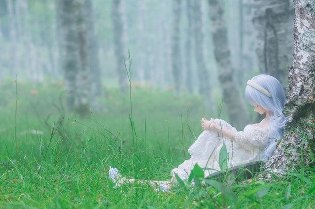 """Sleeping"". Location: Shirakabadaira, Japan. (Photo and caption by AZURE)"