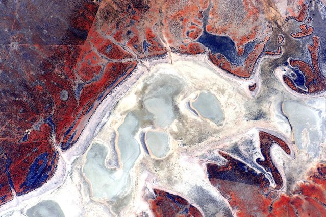 """Astronaut Scott Kelly posted this photo of Australia taken from the International Space Station on Twitter with the caption, """"#EarthArt A single pass over the #Australian continent. Picture 16 of 17. #YearInSpace"""". (Photo by Scott Kelly/NASA)"""