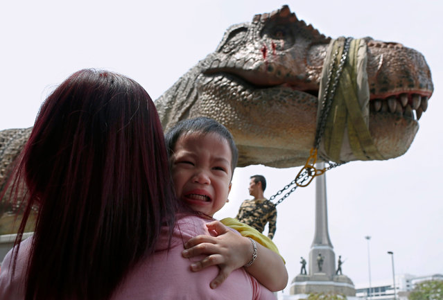 """A Thai child appears to be frightened by a life-size Tyrannosaurus rex or T-Rex dinosaur model during a transport on a street at Victory Monument to promote the opening of a theme park, in Bangkok, Thailand, 29 February 2016. The 13 meter long and four meter height T Rex weights around one ton. A T-Rex and Triceratops dinosaur model were moved in central Bangkok to be installed and to promote the opening of the theme park """"Dinosaur Planet"""" featuring more than 200 dinosaurs from various species. (Photo by Rungroj Yongrit/EPA)"""
