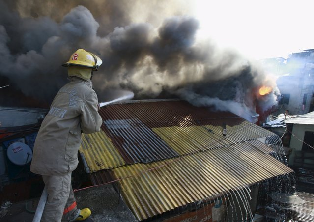 A firefighter uses a fire hose to put out a fire as it razes a residential areas in San Andres Bukid, metro Manila March 12, 2016. (Photo by Romeo Ranoco/Reuters)