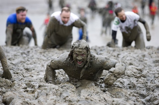 Participants crawl across the finish line during the annual Maldon Mud Race in Maldon, east England, on April 26, 2015. Originated in 1973, the race involves competitors racing around a course through the River Blackwater in Essex at low tide. (Photo by Justin Tallis/AFP Photo)