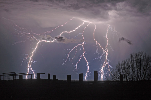 """Lightning Flash Photography"". Tregeagle, New South Wales, Australia – September 21, 2008. (Photo by Michael Bath/Caters News)"
