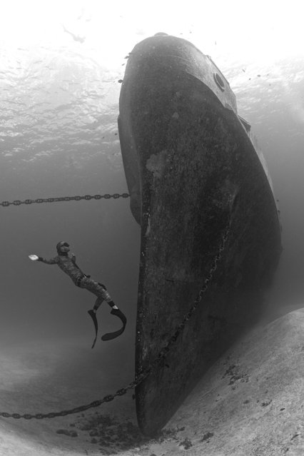 2014 Underwater Photography Photo Contest winners, Wide angle wrecks category, 1st place. (Photo by Ellen Cuylaerts/UnderwaterPhotography.com)