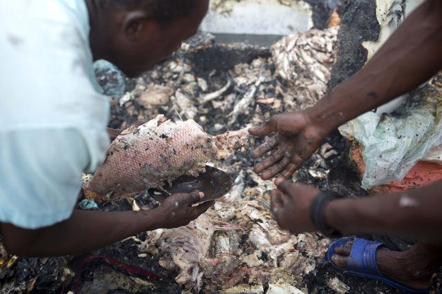 Men collect burnt fish from a stand after a massive fire at a market in Port-au-Prince, Haiti, Monday March 20, 2017. (Photo by Dieu Nalio Chery/AP Photo)