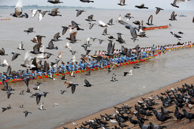 Doves fly as participants row their boat during the annual Water Festival on the Tonle Sap river in Phnom Penh, Cambodia, November 10, 2019. (Photo by Samrang Pring/Reuters)