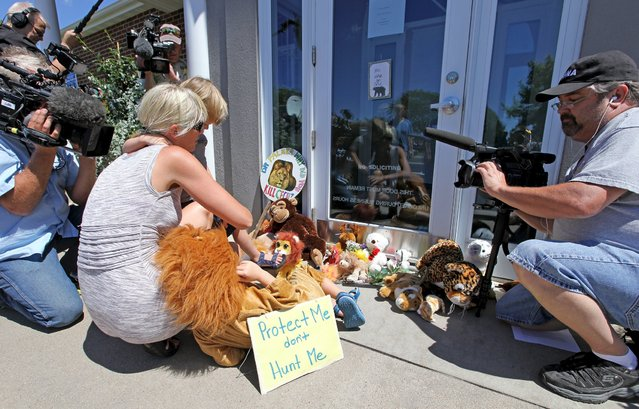 Sarah Madison (L) holds her son Beckett, 3, as her daughter Quinn, 5 (in costume), look at stuffed animals blocking the doorway of River Bluff Dental clinic in protest against the killing of a famous lion in Zimbabwe, in Bloomington, Minnesota July 29, 2015. (Photo by Eric Miller/Reuters)