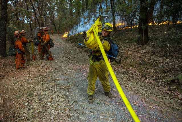 Fire crews finish working a fire line near the town of Glencoe on Highway 26 in Jackson, Calif., on Friday, September 11, 2015. The Butte fire has burned over 64,728 acres and is forcing evacuations in the dry hills east of highway 49. (Photo by Andrew Seng/The Sacramento Bee via AP Photo)