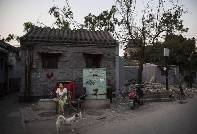 A Chinese woman sits with her dog outside her Hutong or traditional home, on September 18, 2014 in central Beijing, China. (Photo by Kevin Frayer/Getty Images)