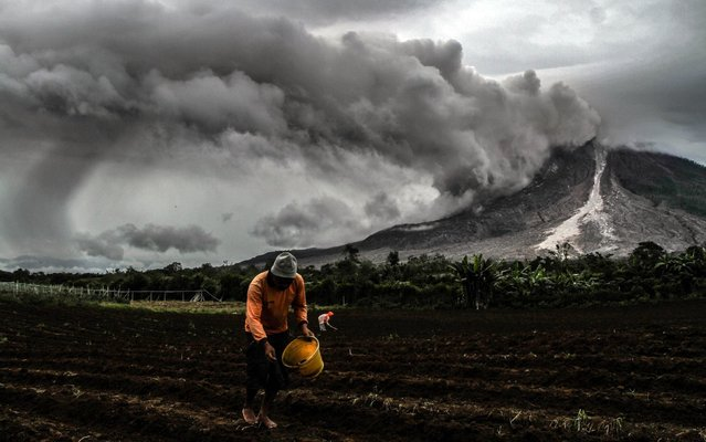 Indonesian farmers work in farmland near Mount Sinabung volcano in Karo, Indonesia on November 29, 2017. Many residents in the area have been forced to relocate to other villages of Northern Sumatra at a safer distance from mount Sinabung volcano, one of the most active in Indonesia. Mount Sinabung roared back to life in 2010 for the first time in 400 years, after another period of inactivity it erupted once more in 2013, and has remained highly active since. (Photo by Ivan Damanik/ZUMA Wire/Rex Features/Shutterstock)