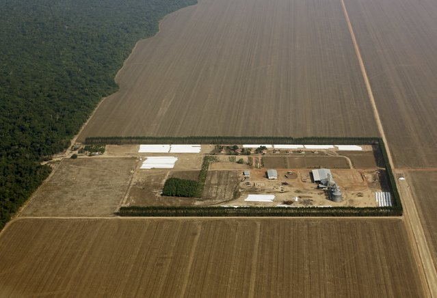 An aerial view shows the Amazon rainforest bordered by a farm and land cleared to prepare for the planting of soybeans, in Mato Grosso, western Brazil, October 2, 2015. (Photo by Paulo Whitaker/Reuters)