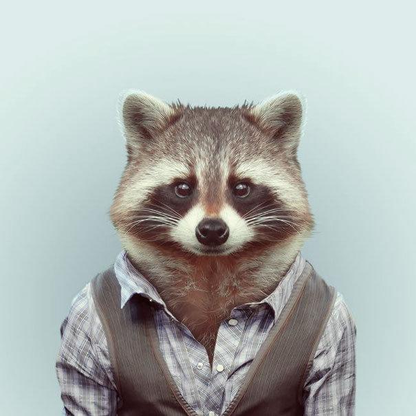 Zoo Portraits By Yago Partal