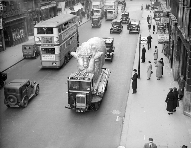 A giant ram is transported along Fleet Street in London, bound for the Glasgow Empire Exhibition for which it was built, 1938. (Photo by London Express/Getty Images)