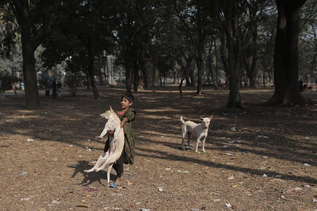 A Bangladeshi homeless child carries a stray dog as she plays at a park in Dhaka, Bangladesh, Monday, February 2, 2015. (Photo by A. M. Ahad/AP Photo)