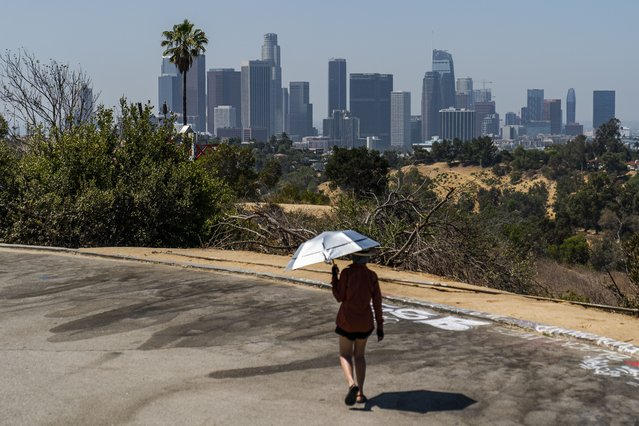 Athlete Sam Richardson uses a UV-Blocking Sun protection umbrella while speed-walking in Elysian Park in Los Angeles Wednesday, July 7, 2021. High heat and record temperatures are expected across the West this weekend. In California's Death Valley, about 150 miles west of Las Vegas, temperatures could reach 130 (54 C). Forecasters warned that much of California will see dangerously hot weekend weather, with highs in triple digits in the Central Valley, mountains, deserts and other inland areas because of strengthening high pressure over the state. Heat warnings did not include major coastal populations. (Photo by Damian Dovarganes/AP Photo)
