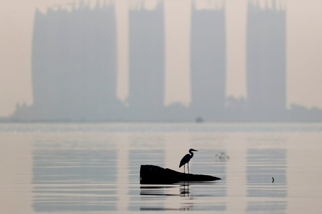 A heron bird perches as smog covers high rise buildings on the north coast of Jakarta, Indonesia, August 28, 2021. (Photo by Willy Kurniawan/Reuters)