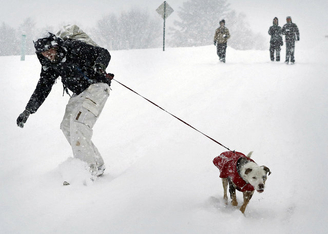 Hayden Curbow gets pulled along by his dog Hazel while venturing out in the snow with friends in Blacksburg Virginia. Curbow was riding a skateboard with an old snow ski screwed to the bottom. (Photo by Matt Gentry/The Roanoke Times)