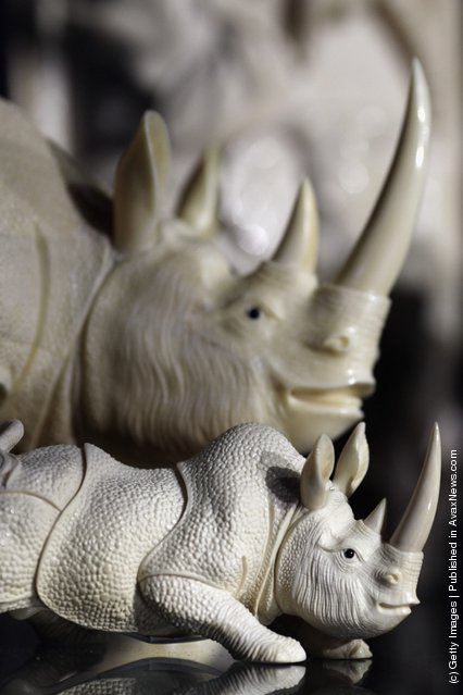Rhinos carved from illegal Ivory