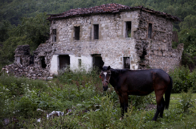 A horse stands next to a damaged building after an earthquake in Floq, Albania, June 1, 2019. (Photo by Florion Goga/Reuters)