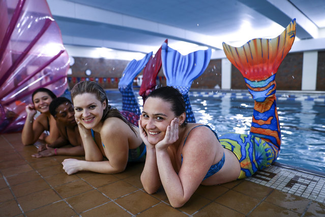 Women practice swimming with mermaid tails at AquaMermaid swimming school, a mermaid training school in Chicago, United States on March 19, 2017. Participants are fulfilling their lifelong ambitions of becoming mermaids with a new type of fitness mermaid swimming. (Photo by Bilgin S. Amaz/Anadolu Agency/Getty Images)