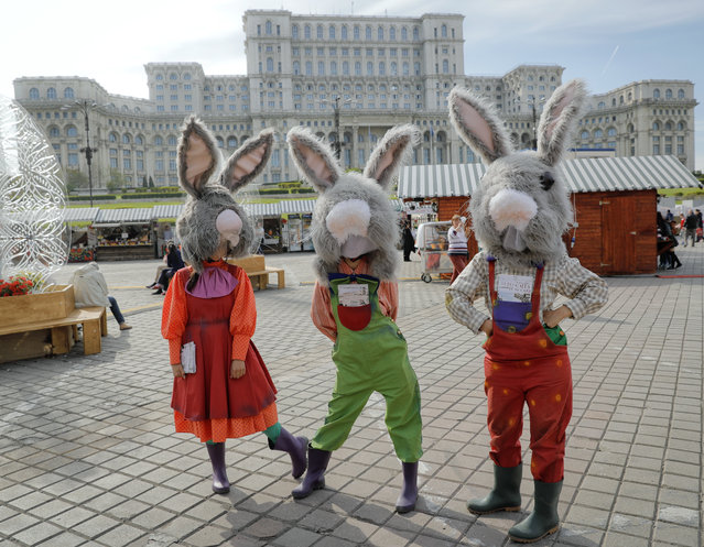 In this Thursday, April 13, 2017, picture entertainers wearing rabbit costumes strike a pose backdropped by the communist era built House of the People, currently the Romanian parliament, at a fair in Bucharest, Romania. (Photo by Vadim Ghirda/AP Photo)