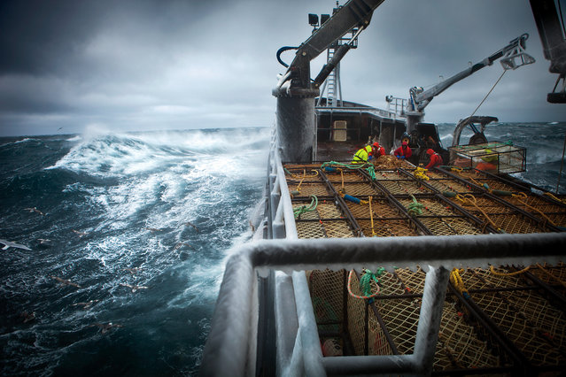 """Deadliest Catch"". It is no wonder the labor department has named crab fishing on the Bering sea the single most dangerous job in America. Freezing temperatures and radically changing weather conditions account for the high rate of casualty. Despite the high pay, 80% of ""greenhorns"" do not return after their first sortie. Photo location: Bering Sea, Alaska. (Photo and caption by Sebastian Copeland/National Geographic Photo Contest)"