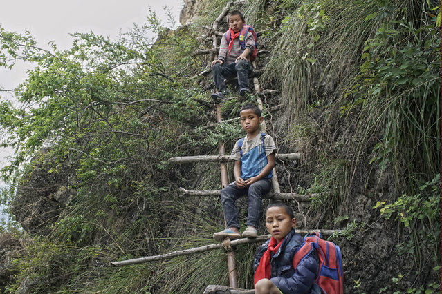 In this May 14, 2016 photo, children carrying their schoolbags take rest on the ladder built on a cliff in Zhaojue county, southwest China's Sichuan province. (Photo by Chinatopix via AP Photo)