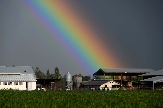 A rainbow shines over a farm in Orland, California, as a severe storm brought funnel clouds and the report of a tornado touchdown in the area, on March 26, 2014. (Photo by Jason Halley/The Chico Enterprise-Record)