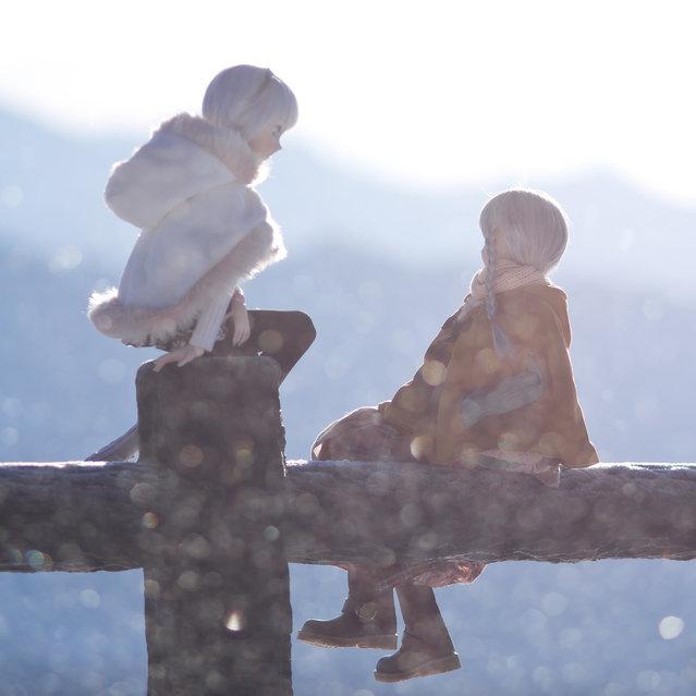 In glittering snow. Model: DollfieDream Sakuya Izayoi & Shiiko (suzuhico's doll)