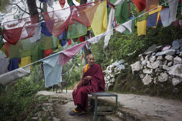 In this Thursday, September 25, 2014 photo, Tibetan exile monk Lobsang Tenzin, 76, sits near prayer flags in Dharmsala, India. Tenzin lives in a home for the aged supported by the Tibetan government-in-exile. He fled Tibet in 2006 leaving his entire family behind. (Photo by Tsering Topgyal/AP Photo)