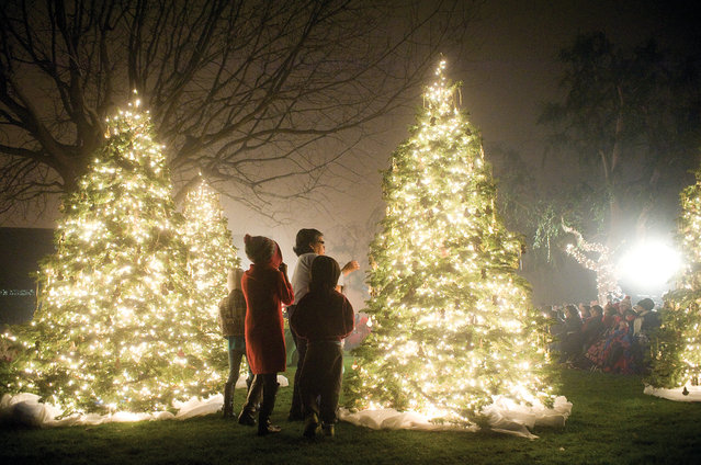 Community members look for the nameplates of their loved ones Tuesday, December 9, 2014 at Myers Funeral Service and Crematory in Porterville, Calif. during the 20th year of the memorial tree lighting. (Photo by Chieko Hara/AP Photo/The Porterville Recorder)