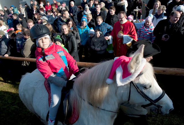 A boy and his pony are blessed by a priest on St. Stephen's day in Srednja Vas, Slovenia December 26, 2016. (Photo by Srdjan Zivulovic/Reuters)