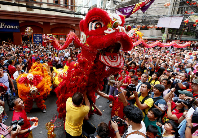 Dragon and lion dancers perform before a huge crowd in celebration of the Chinese Lunar New Year Monday, February 8, 2016 at Manila's Chinatown district in Manila, Philippines. (Photo by Bullit Marquez/AP Photo)
