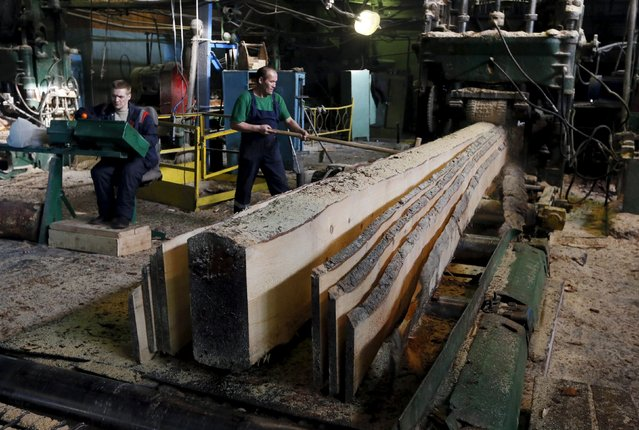Employees saw a log at the Novoyeniseisk wood processing plant, with the air temperature at about minus 20 degrees Celsius (minus 4 degrees Fahrenheit), in the town of Lesosibirsk in Krasnoyarsk Region, Siberia, Russia, February 16, 2016. (Photo by Ilya Naymushin/Reuters)