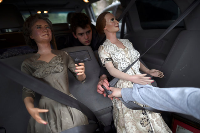 Nick Schaefer, 15, buckles up (L-R) First Ladies Bess Truman and Mary McElroy after purchasing them from an auction of the Hall of Presidents Museum, which closed in November, in Gettysburg, Pennsylvania, U.S. January 14, 2017. (Photo by Mark Makela/Reuters)