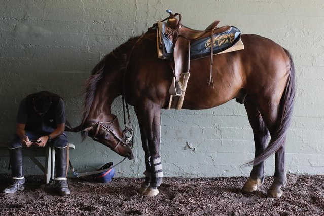 An outrider waits for the fourth race during the last day of the winter/spring meet at the Santa Anita horse racing track Sunday, June 23, 2019, in Santa Anita, Calif. (Photo by Chris Carlson/AP Photo)