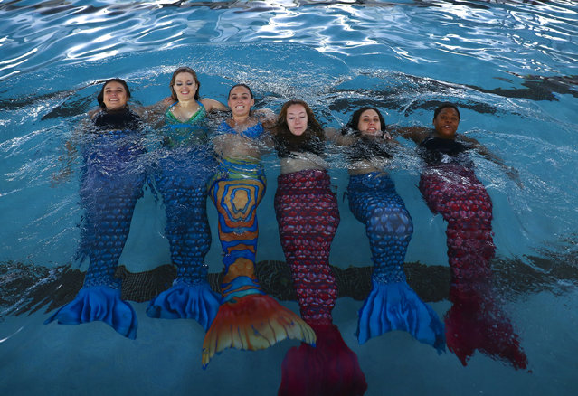 Women practice swimming with mermaid tails at AquaMermaid swimming school, a mermaid training school in Chicago, United States on March 19, 2017. Participants are fulfilling their lifelong ambitions of becoming mermaids with a new type of fitness mermaid swimming. With the concept the schools are able to widen the reach of mermaiding to athletes of all ages, with an atmosphere supervised by trained and certified instructors. (Photo by Bilgin S. Amaz/Anadolu Agency/Getty Images)