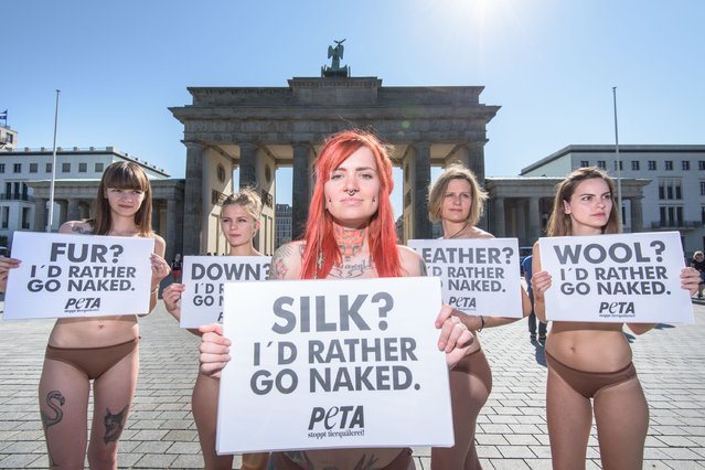 Activists of the animal rights organization PETA  protest against animal suffering in the fashion industry ahead of the Mercedes-Benz Fashion Week Berlin at Brandenburg Gate on July 7, 2015 in Berlin, Germany. (Photo by Thomas Lohnes/Getty Images)