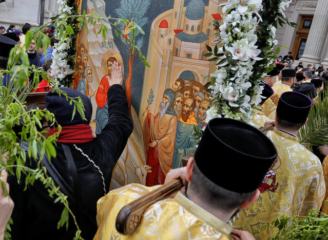 In this Saturday, April 8, 2017, picture a woman touches a large icon carried by Romanian Orthodox priests after a service ahead of Palm Sunday in Bucharest, Romania. (Photo by Vadim Ghirda/AP Photo)