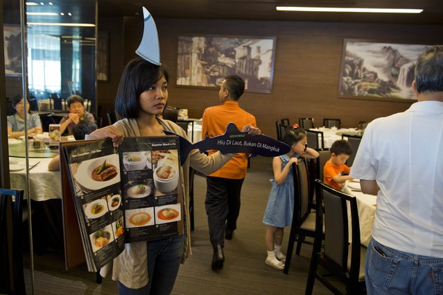 An activist holds up a menu and placard as she and other Greenpeace volunteers and Indonesian marine activists stage a campaign at a popular Chinese restaurant as they demonstrate against the consumption of shark's fin in Jakarta on July 12, 2015. According to environmentalists about 66 per cent of species of sharks and rays found in Indonesia face threat of extinction as the country is one of the largest supplier of shark's fin products. (Photo by Romeo Gacad/AFP Photo)