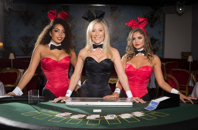 Former Playboy Bunny Angie Best poses for photos with playboy bunnies ahead of her return as the iconic Bunny Mother exclusively at the Telling Tales event at Playboy Club London on September 21, 2017 in London, England. (Photo by Tim P. Whitby/Tim P. Whitby/Getty Images for Playboy)