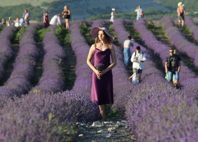 A woman poses for a picture in a lavender field outside Bakhchysarai, Crimea on June 28, 2020. (Photo by Alexey Pavlishak/Reuters)