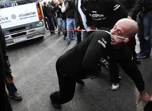 Lasha Pataraia pulls a truck, which weighs 8,250kg (8 tons), with his ear during an event to break the Guinness Book of World Records in Rustavi, outside Tbilisi November 29, 2012. The 32-year-old broke a Guinness record after he managed to pull the truck with his ear for 21,50 metres (70.5 feet), according to organisers. REUTERS/Irakli Gedenidze (GEORGIA - Tags: SOCIETY TPX IMAGES OF THE DAY)