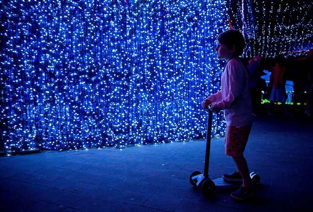 Over one million lights have been set up in Canberra's CBD officially breaking the Guinness World Record for the largest LED image display on November 29, 2014 in Canberra, Australia. (Photo by Stefan Postles/Getty Images)