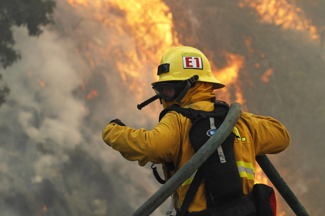 A firefighter battles the Springs Fire at Point Mugu State Park May 3, 2013. A wind-driven wildfire raged along the California coast north of Los Angeles early on Friday, threatening some 3,000  homes and prompting evacuations of a university campus and several  residential areas. The so-called Springs Fire, which engulfed several farm buildings and recreational vehicles but so far has destroyed no homes, had consumed 8,000 acres of dry, dense chaparral and brush by late Thursday, fire officials said. (Photo by Jonathan Alcorn/Reuters)