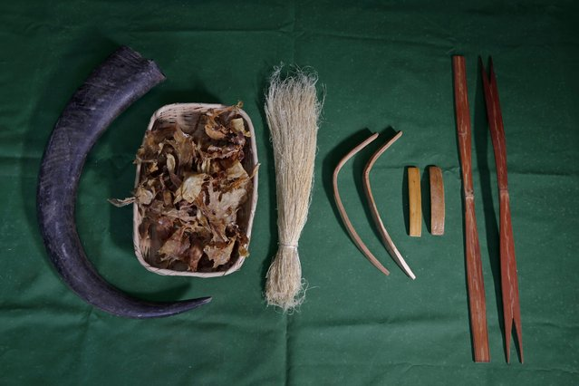 Materials used to make a traditional bow (L-R) horn of a water buffalo, bladder of a croaker, spinal sinew of cattle, mulberry tree, oak and bamboo are on display at the workshop of South Korean bow artisan Kwon Yeong-Hak in Yecheon-gun, Gyeongsangbuk-do, South Korea, 26 February 2015. (Photo by Jeon Heon-Kyun/EPA)
