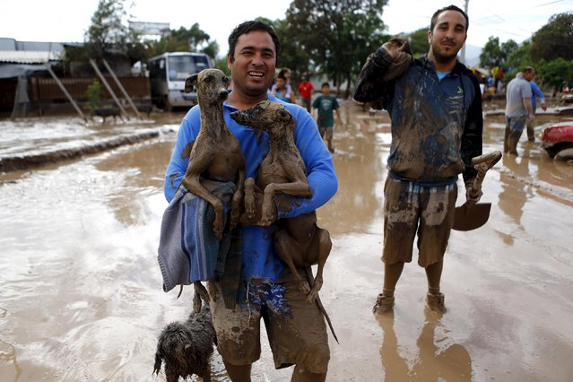 A man holds up his dogs as he leaves his house at Copiapo city, March 26, 2015.  The death toll in Chile rose to four after rains battered the north and caused flooding, the government said on Thursday, while 22 others were unaccounted for as the military rescued stranded villagers. (Photo by Ivan Alvarado/Reuters)
