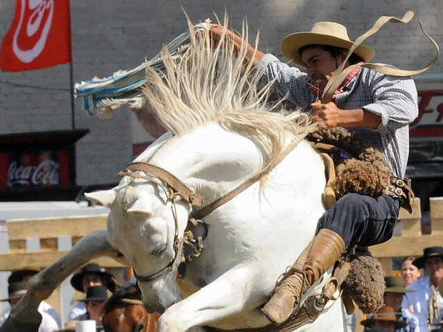 A gaucho rides a bucking colt during the traditional rodeo week in Montevideo on March 29, 2015. (Photo by Miguel Rojo/AFP Photo)