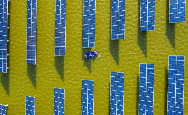 This aerial photo taken on July 19, 2021 shows electrical workers in a boat as they check solar panels at a photovoltaic power station built in a fishpond in Haian in China's eastern Jiangsu province. (Photo by AFP Photo/China Stringer Network)