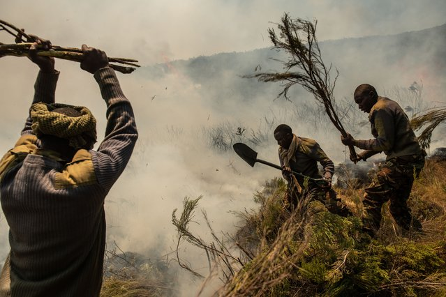 Soldiers from the Kenya Army fight a fire on March 1, 2019 in Mount Kenya National Park, Kenya. An estimated 35,000 acres of land has been burned by the fire which responders have struggled to contain due to wind and dry conditions in the region. (Photo by Andrew Renneisen/Getty Images)